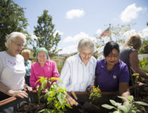 The Importance of Daily Activities in Memory Care