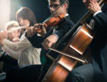 Understanding the Link Between Mozart, Music and Memory